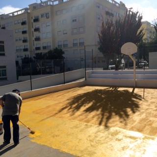 Parque_Escolar_PV3