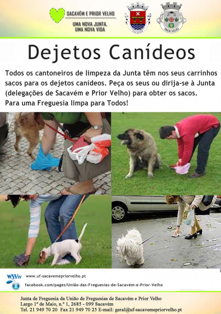 dejetos_canideos2